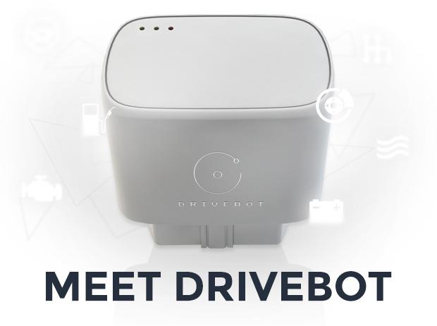 meetDrivebot