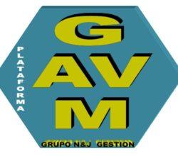 1531991524_LOGO_GAVM