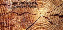 1521571484_MaderaJusta_Web_2