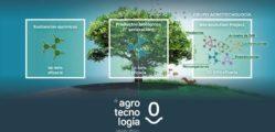 1532068694_arbol_Ga_a_copia